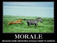 Modern Morale-ity
